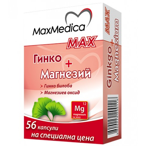 Гинко + Магнезий МАКС