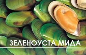 Зеленоуста мида